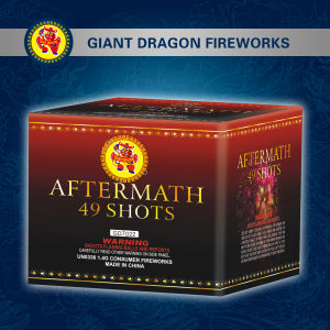 49 Shot Cake Fireworks/Battery of Shot Tube Gd8491 pictures & photos