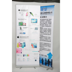 Aluminum Roll up Display, Display Stand, Roll up Banner Printing (PD-002) pictures & photos