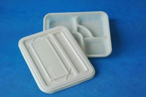 Five Compartments Disposable Biodegradable Corn Starch Lunch Box