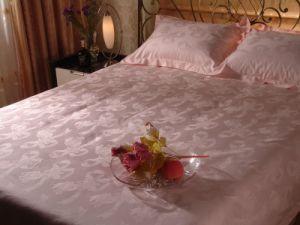 Hotel Bedding, Duvet Cover & Pillow Case (SDF-B029) pictures & photos