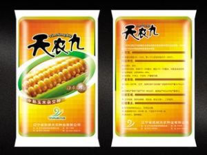 Plastic Bag for Food with Vivid Gravure Printing pictures & photos