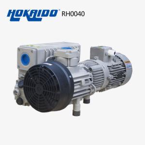 Vacuum Etching Machine Used Oil Lubricated Vacuum Pump (RH0040) pictures & photos
