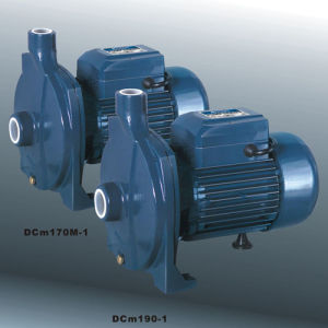 Centrifugal Pump (DCM Series) pictures & photos
