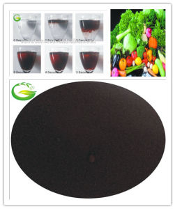 Soluble Organic Fertilizer EDDHA Fe 6% pictures & photos