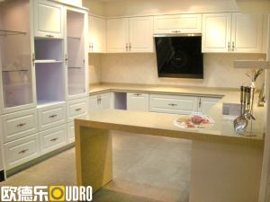 Kitchen Furniture Cupboard (ODR-K005)