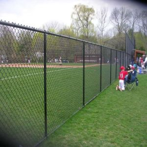 Chain Link Mesh Fence/Galvanized Chain Link Fence/PVC Coated Chain Link Mesh Fr1 pictures & photos