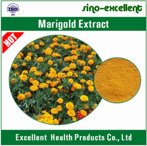 Natural Marigold Extract Water Soluble Lutein
