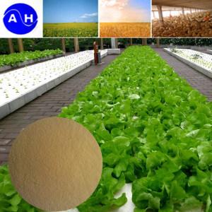 Plant Source Enzymolysis Amino Acid 80% Powder Fertilizer pictures & photos