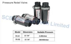 Vacuum Pump 300-600mbar Plastic Pressure Relief Valve (RV-02) pictures & photos
