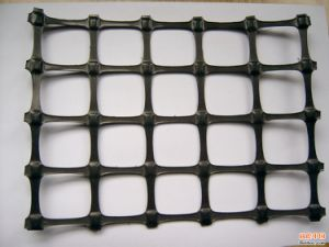 Exporting Quality PP Material Biaxial Geogrid -Tgsg15-15 pictures & photos