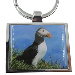 Promotional Die Cast Personalized Metal Keychain pictures & photos