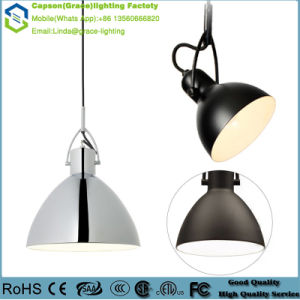 Modern Decoration Metals Pendant Lamp Gd-5072-1s/ M/ L pictures & photos