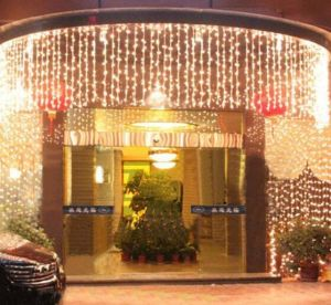 3X3m LED Christmas Wedding Party Decoration Curtain Light pictures & photos