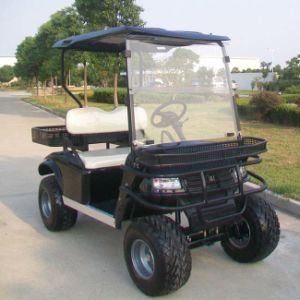 China OEM Manufacturers 2 Seats Hunting Golf Carts (DH-C2) pictures & photos