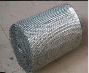 Wire Mesh Belt for Conveyor Equipment pictures & photos