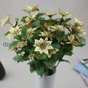 3 Color Poinsettia Flower for Christmas and Home Decoration (SF15964) pictures & photos