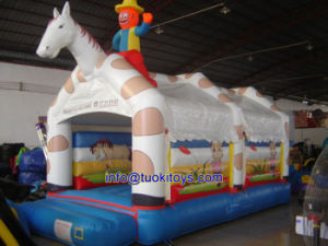 Sale Inflatable Game for Interactive Sport (B026) pictures & photos