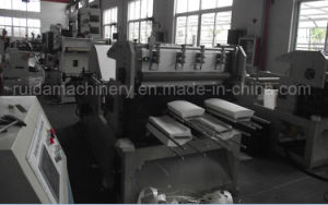 Punching and Die Cutting Machine (RD-CQ-850) pictures & photos