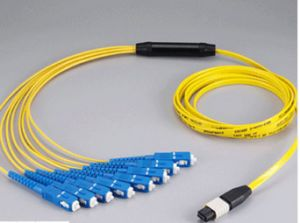 MPO-Sc Fanout 12core Mini Round 3.0mm Fiber Optical Patchcord pictures & photos