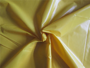 20d Nylon Taffeta Fabric for Down Coat (XSN006) pictures & photos