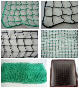 High Strength Cargo Net (CN220) pictures & photos
