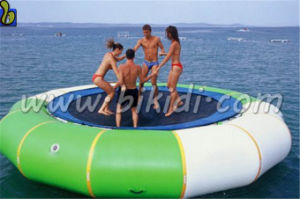 Hot Sale Inflatable Jump Water Trampoline, Inflatable Sea Trampoline for Sale D3017 pictures & photos