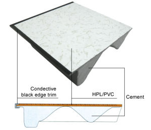 HPL/PVC Raised Floor pictures & photos