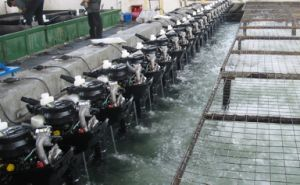 4HP 4-Stroke Outboard Engine pictures & photos