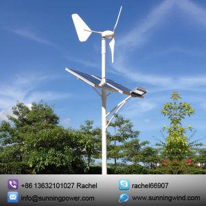 1000W Hybrid Solar Wind Power Generation System