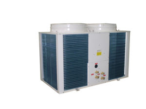 Air Cooled Direct Expansion Air Handling Unit pictures & photos