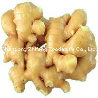 250g Fresh Ginger with High Quality pictures & photos