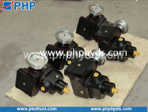 Rexroth A2vk Metering Hydraulic Pump A2vk12, A2vk28, A2vk55, A2vk107 for Foaming Injection Machines pictures & photos