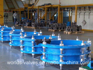 Wcb Pipe Expansion Joints (WDS) pictures & photos