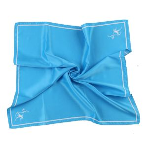 Solid Light Blue Square Scarf Custom Made Logo Silk Printed Scarf (LS-39) pictures & photos