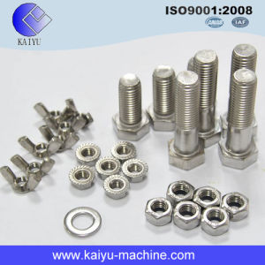 Standard Fastener / Blind Rivet / Bolt and Nut pictures & photos