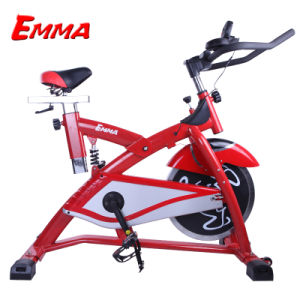 Hot Home Use Bike Exercise Bike Spin Bike (AM-S2000B) pictures & photos