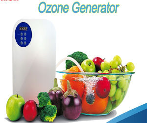 Best Quality Ozone Generator/Ozone Sterilizer/Ozone Therapy Machine Made in China pictures & photos