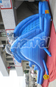Cheap Commercial Blue Dolphin Inflatable Water Slide Chsl231 pictures & photos