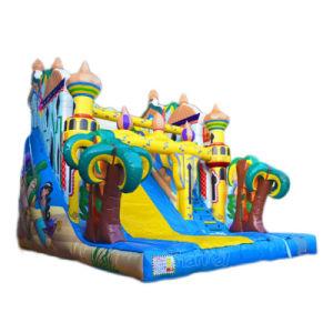 Princess Jasmine Castle Inflatable Dry Slide Chsl620 pictures & photos