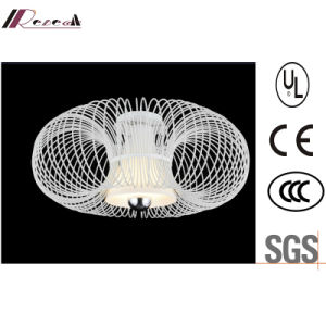 Modern Hotel Decrotive Metal Cage Fixture Ceiling Lighting pictures & photos