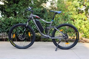 2016 European Hot Sale Electric Bicycle with En15194 pictures & photos