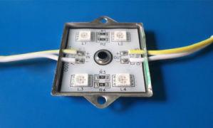 5050 LED Lights DC12V Waterproof LED pictures & photos