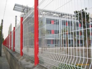 Welded Wire Mesh Fence China Anping Factory High Quality pictures & photos
