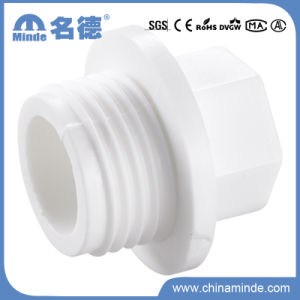 PPR White Fittings-Pipe Plug for Building Materials pictures & photos
