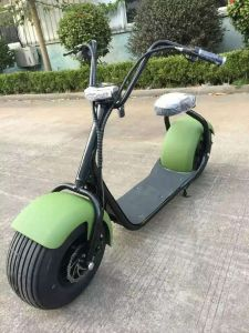 China ce and rohs 1000w brushless motor citycoco electric for Big wheel motor scooter