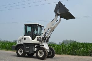 Narrow Place Use Diesel Compact Mini Loaders pictures & photos