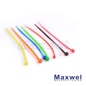 Self-Locking Nylon Cable Tie Widely Used to Bundle Cable pictures & photos