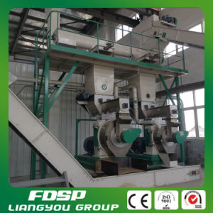 Cane Trash Grinding System Pulverizer Machinery for Biomass Pellet Plant pictures & photos