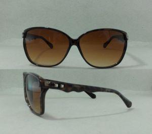 Fashion Sunglasses Eyeglass