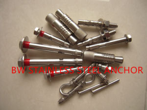 Stainless Steel 304/316 Heavy Bolt Anchor pictures & photos